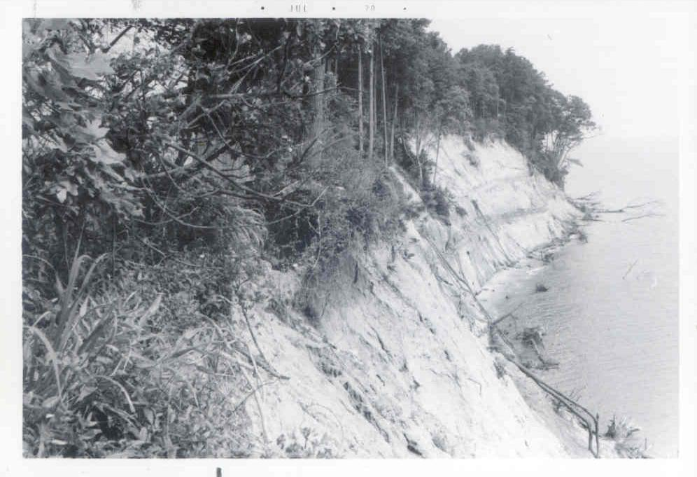 Cliffs of Calvert State Park, Calvert County - July 15, 1970