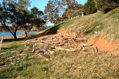 Erosion of inland bank due to lateral expansion of zone of wave influence. Anne Arundel Co. [2]