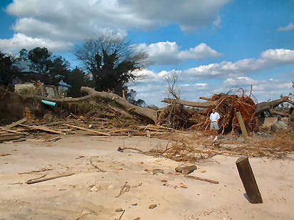 Estimated 65x25 ft section of shoreline washed away, toppling trees. Fairhaven, Chesapeake Bay, Anne Arundel Co.