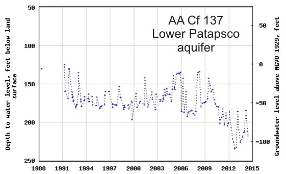 hydrograph for observation well AA Cf 137 in the Lower Patapsco aquifer