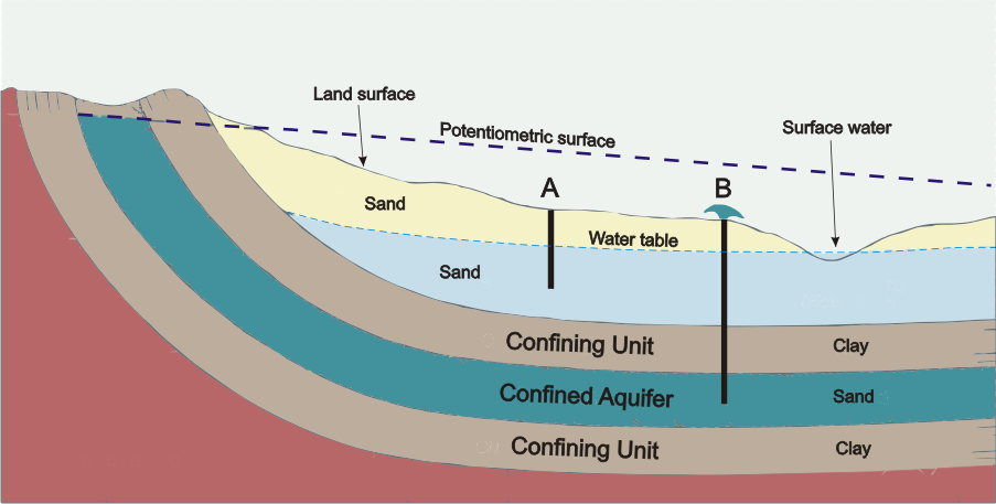 Water Table and Artesian Aquifers